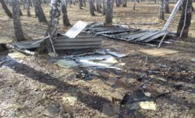 В Тюмени продолжается реализация проекта ОНФ «Генеральная уборка»